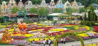 Ghé thăm Everland công viên giải trí hàng đầu Hàn Quốc
