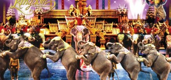 Xả stress tại khu vui chơi giải trí Phuket Fantasea