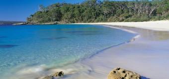 Khám phá vịnh Jervis ở Úc