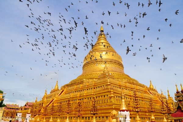Chùa vàng Shwezigon (Bagan)
