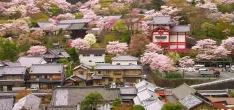 Ghé thăm Thủ đô Nara một thời Nhật Bản