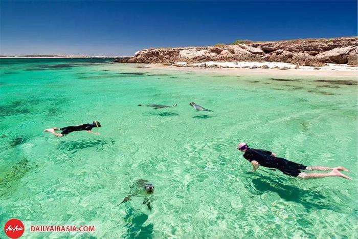 Ghé thăm bán đảo Eyre – Điểm đến nghỉ dưỡng lý tưởng ở Úc