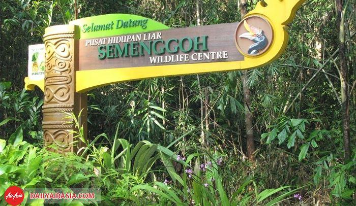 Khu bảo tồn Semenggoh