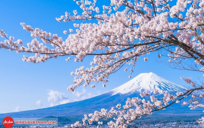 Đến Nhật Bản tham dự những lễ hội cực thú vị