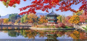 Seoul, Hàn Quốc – thành phố phải đến trong đời