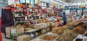 Mua nhân sâm ở Hàn Quốc và những điều du khách cần chú ý