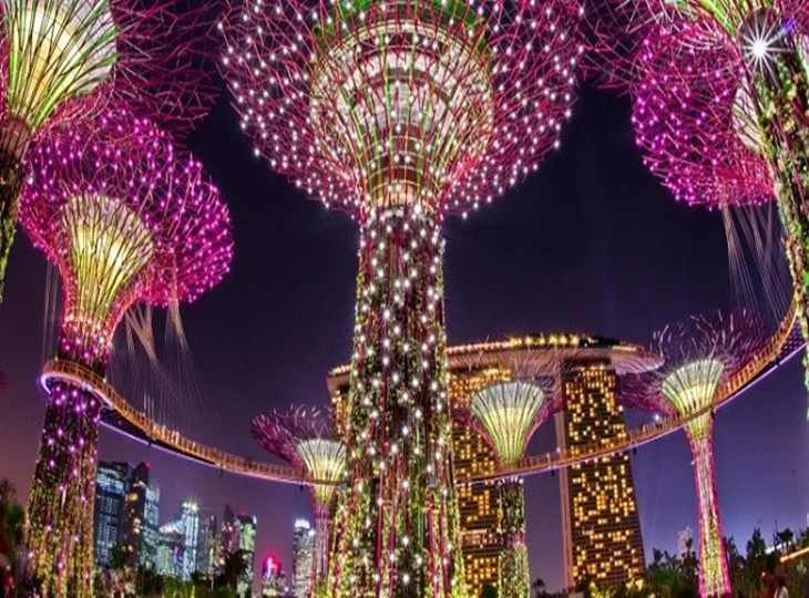Tham quan khu vườn trên cao Garden by the Bay, Singapore